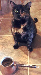 a Coffee Cat and ibrik